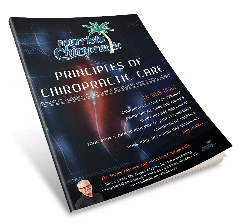 Principles of Chiropractic Care